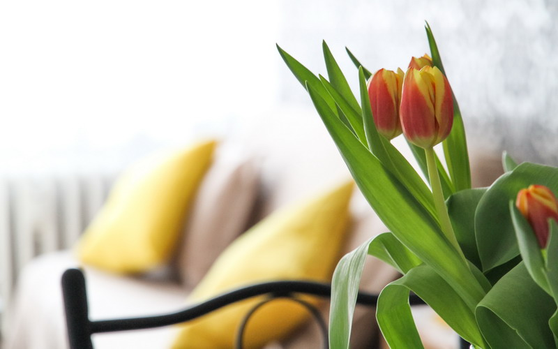 einrichtungstipps f r kleine r ume blog der accept immobilien gmbh. Black Bedroom Furniture Sets. Home Design Ideas